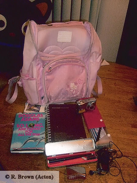 ... a Hello Kitty Junkie and carry around a pink Hello Kitty backpack in ...